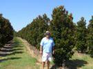 Featuring Magnolias